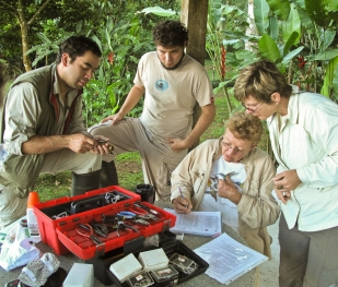 Bird banding at an SVBC mist netting session at Finca Cantaros.