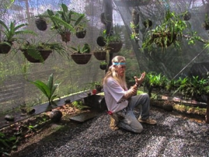 Dave in the Orchid Enclosure (Photo by Pat Morgan)