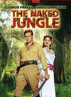 n jungle.jpg